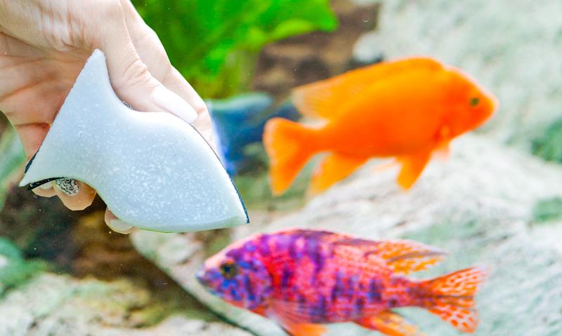 Reinigungsprodukte-fuer-die-aquaristik