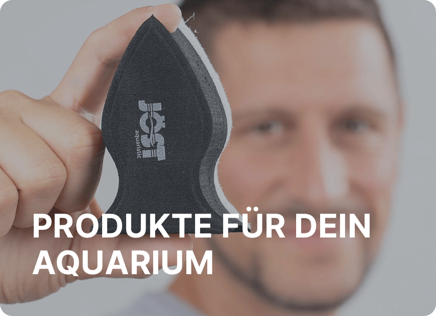 Produkte_fuer_dein_Aquarium