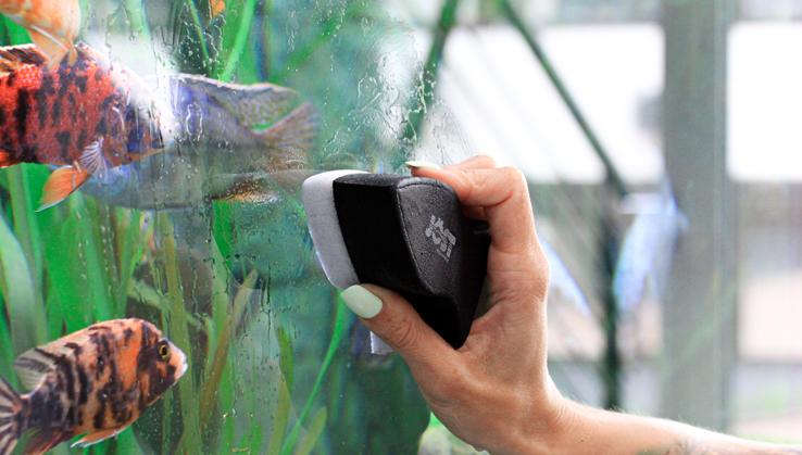Jöst Aquarium Scheibenreinigungsset Guppy